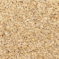 Crimped Oats